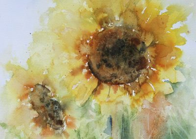 Sue Bradley - Girasoles